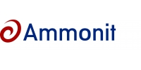 Logo Ammonit Measurement GmbH