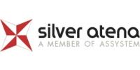 Logo Silver Atena Electronic Engineering GmbH